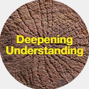 deep-understanding