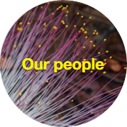 our-people