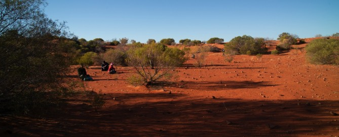 Celebrating with Arid Recovery